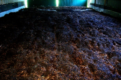 large pile of compost inside