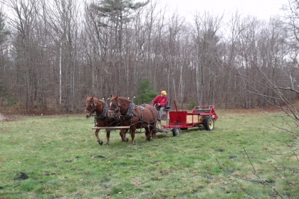 horse-drawn spreader with man driving